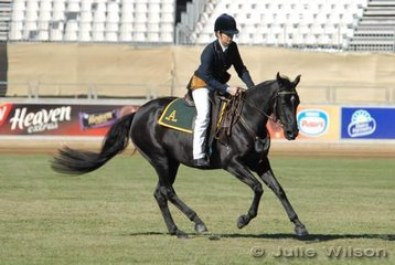Dale Lyons rode her own 'Petas Request' by Longi Rio' to win the Working Australian Stock horse Mare class.