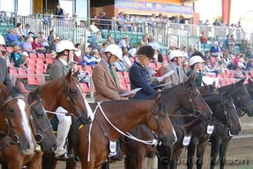 The Royal Show this year insisted on all riders wearing hard hats. Safe of course but not quite the same look. Here the Working Gelding riders study their workout.