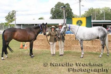 Winner of the Progeny Pair by the Same Sire 'Creswood Rivoli All Talk' exhibited by Transmere Pty Ltd