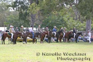 Lineup of competitors for the Senior Working Mare class