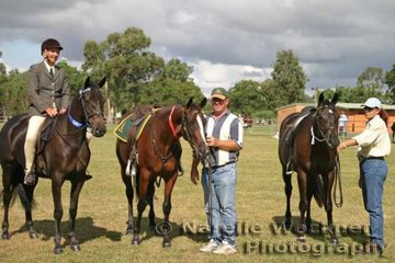 Triple win for Kayleen Shea in the Hack Colt, Filly or Gelding taking out 1st, 2nd & 3rd with 'Notus Dente', 'Boonara Signet' & 'Sheady Knights Image'