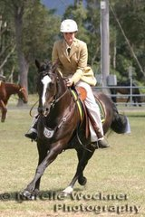 Winner of the Station Horse of any age 'Yoorana Calamity Jane' exhibited by Erin Morgan