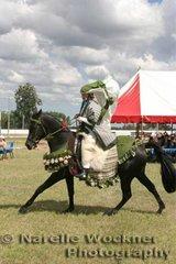 Winner of the Arabian Costume 'Pharoe Phylena' ridden by Toni Baker