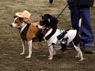 """""""The Sherriff"""" & """"Deputy Dan"""" stole the show in Dog Trail in these very smart outfits"""