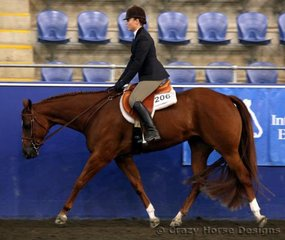 Emma Tagget & BPS Pretty Neat Stage were 6th place in Senior Hunter Under Saddle