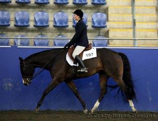 State Champions in Junior Hunter Under Saddle was Natalie Wood riding Radical Rythm