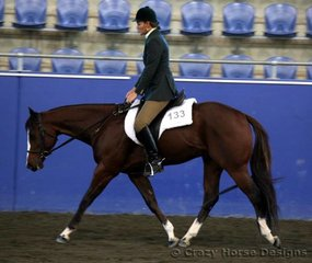 Lisa Cook rides One Elle Of A Parr-T in 2 yr old Hunter Under Saddle to a 3rd place
