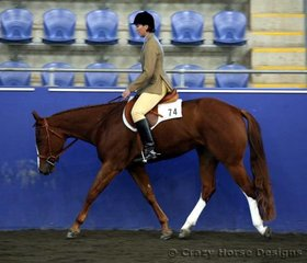 Annlee Light My Fire & Annette Boyd were 6th place in 2 yr old Hunter Under Saddle