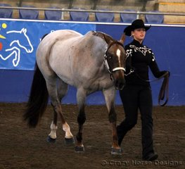 Danielle Phillpots-Green & Charary Glory B were the winners of Amateur Owner Showmanship