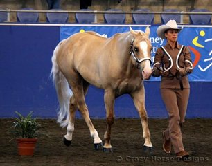 Danielle Franchina & Scotch trot around the marker in Amateur Owner Showmanship. The pair were placed 4th in this event