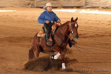 Warren Backhouse Training Stables Novice Horse Open competitors, Freckles Miss Spinner & Noel Watson.