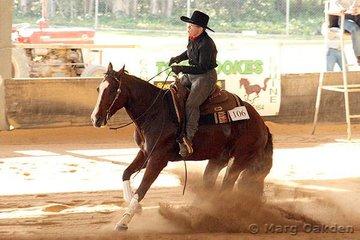 Sliding into the sunlight are Novice Horse Non-Pro competitors, A Splash Of Bandit & Kathleen Murphy.