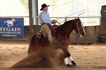 Novice Horse Open competitors, Starlights Wrangler & John Wicks.
