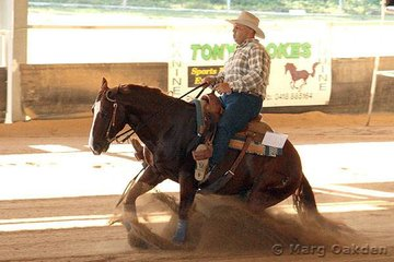 The state champions of the Thomas Trailers Novice Horse Non-Pro Reining were Uncle Cracker & Peter Bartolo.