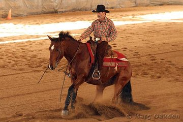 Hot Little Lena & Trevor Paech competing in the Novice Horse Non-Pro Reining at the QRHA State Championships.