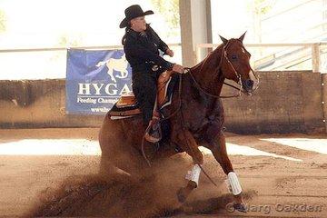 Novice Horse Open competitors, Sargeant Spot & Leanne Bartlett.