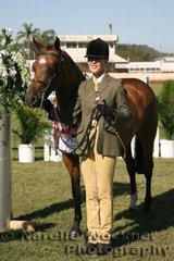 Champion Open Led Large Show Hunter Pony 12.2h & ne 14h 'Farleigh Carinthia' exhibited by Deborah Bell