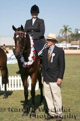 Champion First Season Large Show Hack over 16h 'Kholo' exhibited by Ros Lipp with judge Terry Van Heythyson