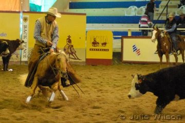 Jason Leitch from Springsure Qld rode Peter and Debbie Gesler's, Kalvale Yellow Miss by Seligman Spin to score 142.5 in the first go-round of the NCHA Open Futurity.
