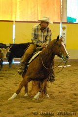 Russ Benson from Tamworth rode the Yulgilbar QH Stud's nomination Yulgilbar Shesa Playgirl by the famous sire Playboy Roy to score 142 in the first go-round of the NCHA Open Futurity.