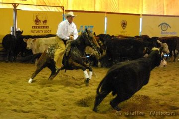 Richard Webb from Illabo NSW rode Robert Randall's Sennas Double Fortyniner by Spinnies 49'er Senna to score 141 in the first go-round of the NCHA Open Futurity.