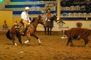 Ian Stringer from Maryborough Vic. rode Shane Heard's Jacquelyn Fritz by Oaks Jackhammer to score 136 in the first go-round of the.NCHA Futurity final.