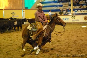 Phil Dawson from Inverell NSW rode Jodie and Craig Mearns, Daddys Girl by Dmac Daddy to score 133 in the first go-round of the NCHA Futurity final.