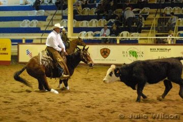 Richard Webb from Illabo NSW rode Gillian Grant's, Woodman by Freckles Fortissimo to score 138 in the first go-round of the NCHA Open Futurity.