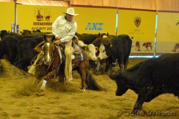 2007 Hall of Fame inductee Ian Francis, rode Raelene Higgin's Oaks Unchained Melody by Tassa Lena to score 142 in the first go-round of the NCHA Open Futurity.