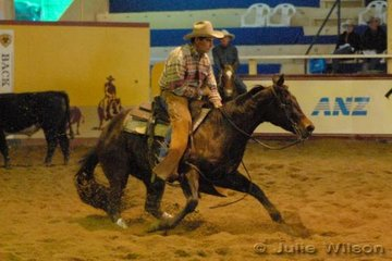 Steve Felton from Bendemeer NSW rode the Western Australian nomination owned by Trevor Jellicoe,  Akasha by Freckles Fortissimo to score 137 in the first go-round of the NCHA Open Futurity.