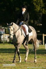 """Sally Yeomans riding """"Viewbank Houdini"""" in the CNC** dressage"""