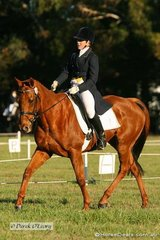 """Kristie Austin riding the frst of her CNC** mounts """"Carpe Di'Em"""" which ended up placed 8th."""