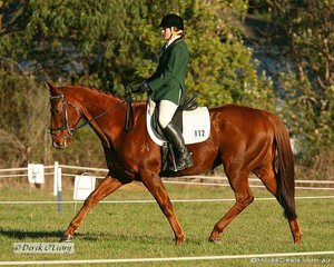 """Averil McKenzie in the Preliminary 1 riding """"Bearski"""", Averil placed 11th in the Prelim 1 at the end of all phases."""