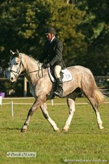 """Rob Barling in the CNC* dressage riding """"Tiffy"""""""