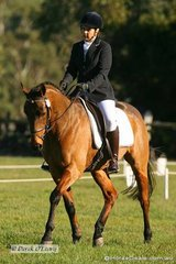 """Simone Dekever riding """"Bold Diplomat"""" in the CNC* dressage phase. Simone placed 13th at the end of all phases."""