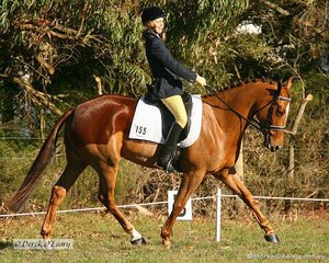 """Sarah Hall had something to smile about, taking out 1st place in the Preliminary 2 riding """"Nawarrah Park Happy Gilmore"""""""