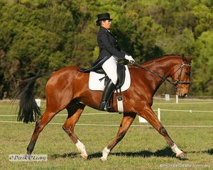 """Georgie Birrell riding """"Pentonville Grove"""" in the CNC** Dressage, Georgie placed 6th at the completion of all phases."""