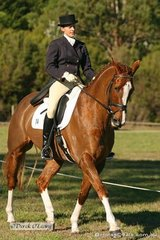 """Sally Morrison on """"In Your Dreams"""" AKA """"Dreamie"""" in the Dressage phase of the CNC**. Sally went on to win the class at the completion of all phases."""