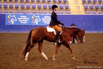 Chloe Doolan riding Winderadeen Kay Cee Jones in the Youth Hunt Seat Equitation 12 - 14 Years.