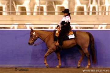 Sady Hollier's nerves quickly changed to a broad grin when she won the RDA Walk & Jog Western Horsemanship on her gelding, WJ Cash.