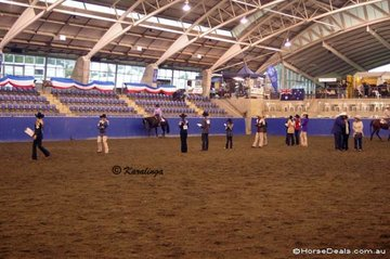 Youth Judging, Western Pleasure section.