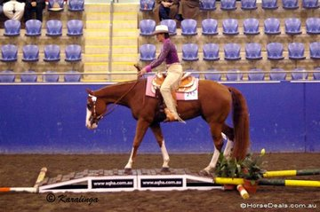 Desarae Greening & Winderadeen Playitagainsam were Reserve Champions in the 2 Year Trail class.
