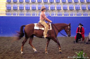 Michael Webb working out in the 12-14 Years Youth  Western Horsemanship on Triple Lynx.