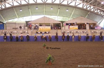 The line-up of competitors in the Amateur Western Horsemanship class.