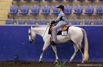 Winner of the 11 & Under Youth Western Horsemanship, Ashley Van Den Bogart on Denims The Menace.
