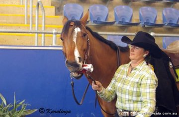 Carol Elliot's ZP Zips Boomer getting his cafeine boost for the day.