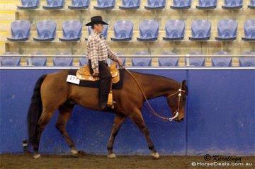 Norm Wakeham riding Winderadeen Kay Barpass in the Amateur Junior Horse Western Pleasure.
