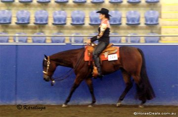 Yasmin Lee-Steers riding YLS Pawsitively in the Junior Horse Western Pleasure.