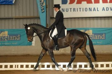 Bill Noble from NSW rode Kelecyn Toblerone to score 60 in the dressage phase of the CCI**.