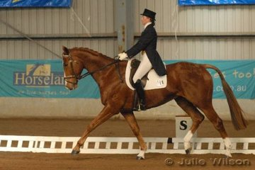 CCI** overnight leaders,with a score of 49.4, Emma Scott from NSW riding her TB gelding, Mustang.